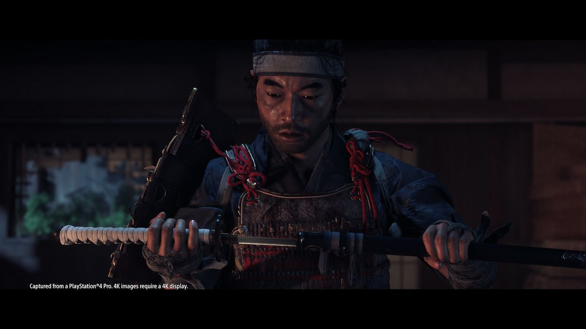 The ghost of Tsushima